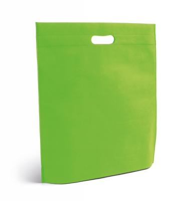 Alexander-light-green-bag