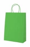 "Store"" paper bag-green"