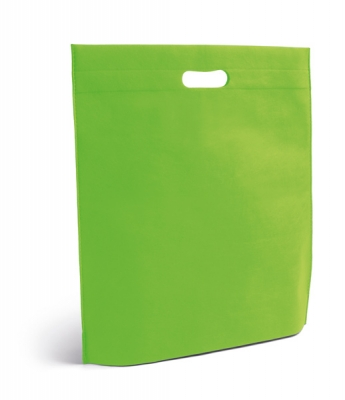 Alexander-light-green-bag