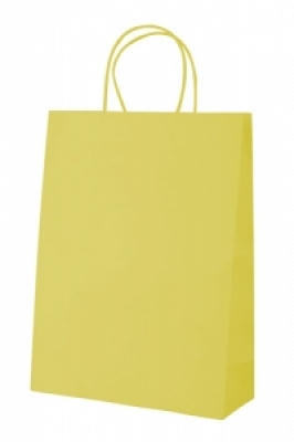 """Store"" paper bag-yellow"