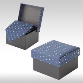 Синя Вратовръзки DANNY AP12300-6A
