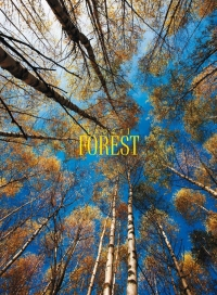 Гори - Forest